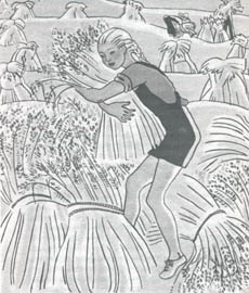 Garnet Harvesting Oats, from 